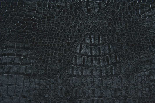 Alligator Skin Wallpaper 534x356