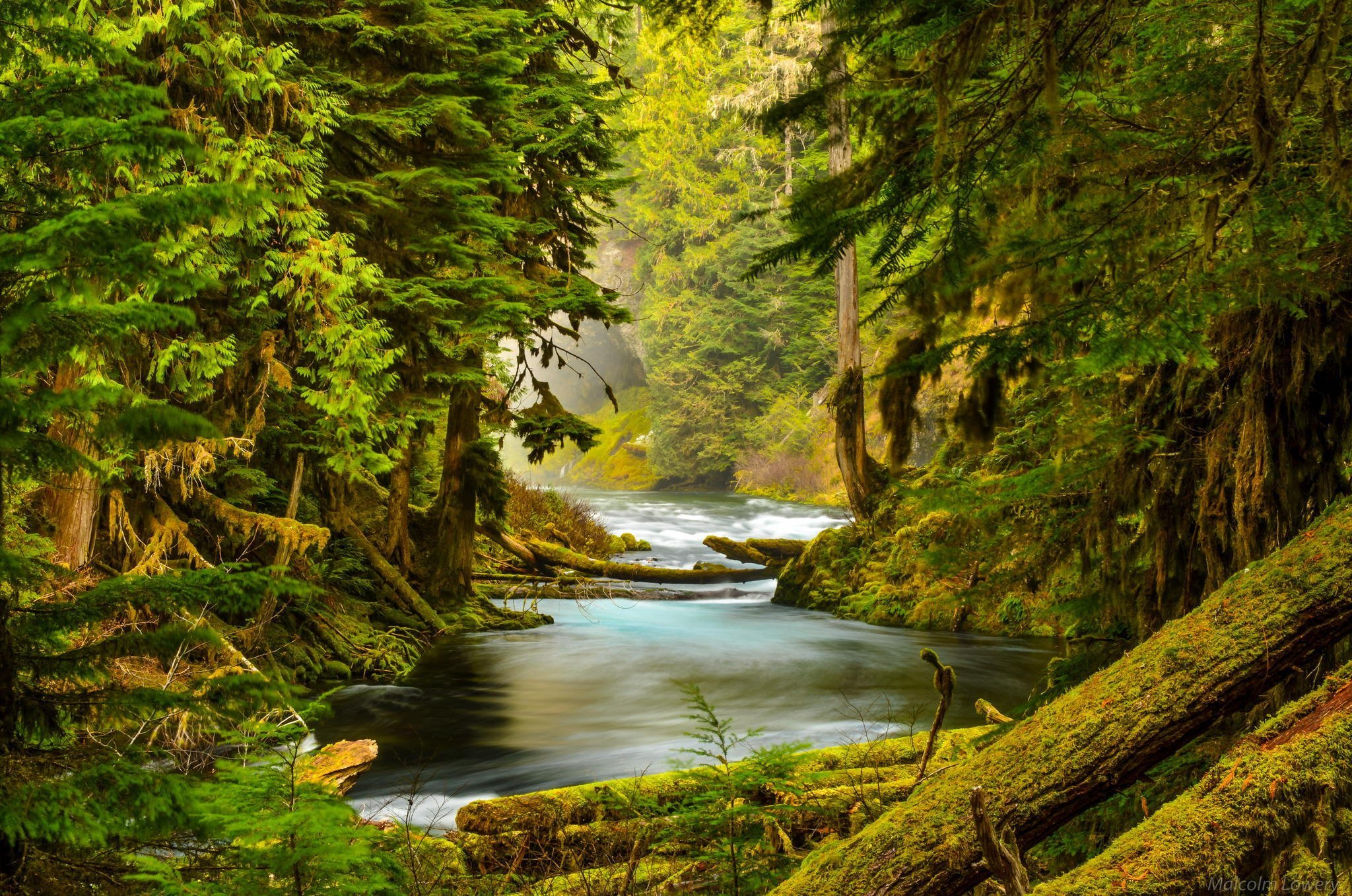 Misty Green Forest Nature River Beautiful 1ziw: Oregon Nature Pictures Wallpapers