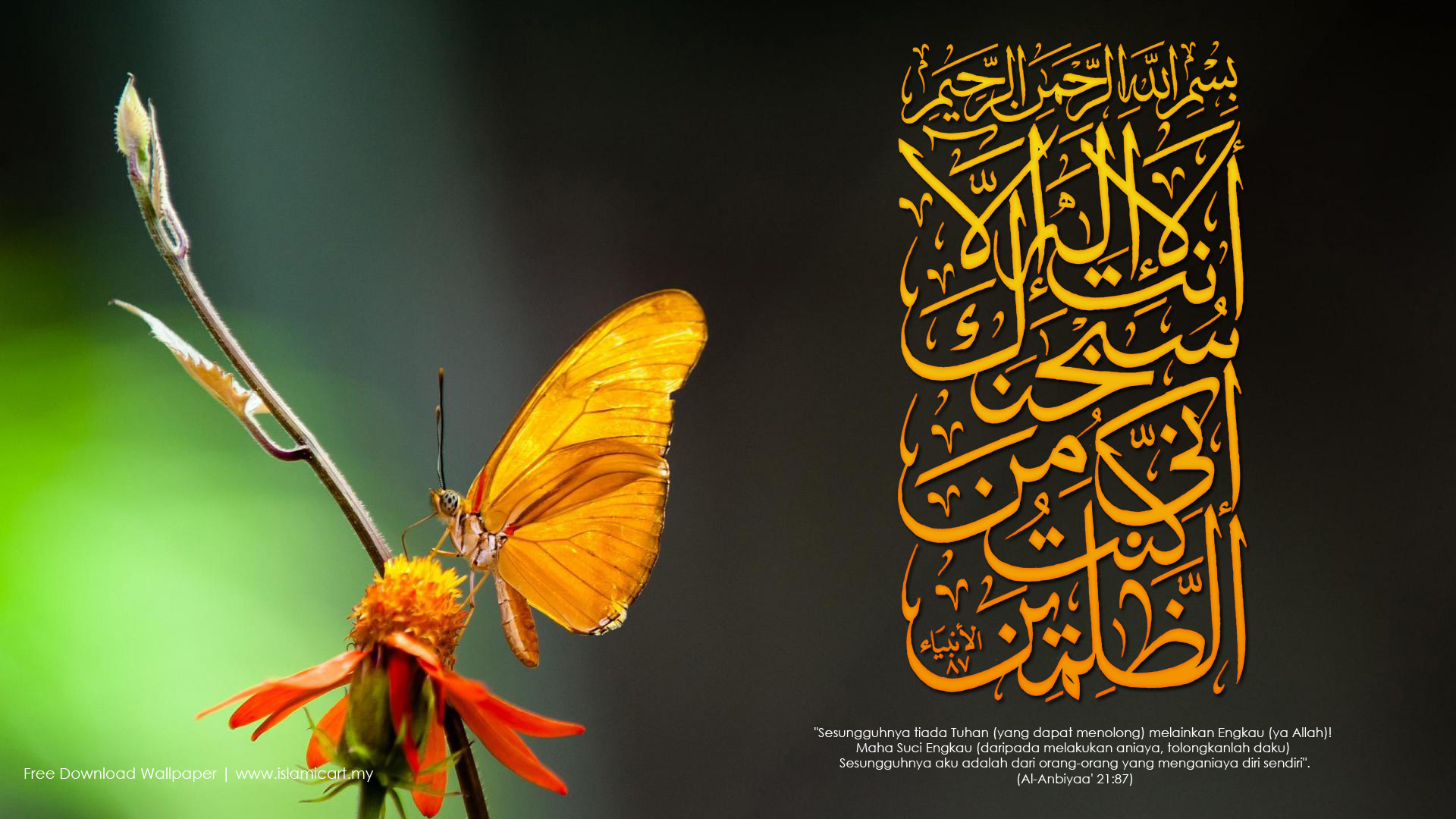free download wallpapers arab - photo #25