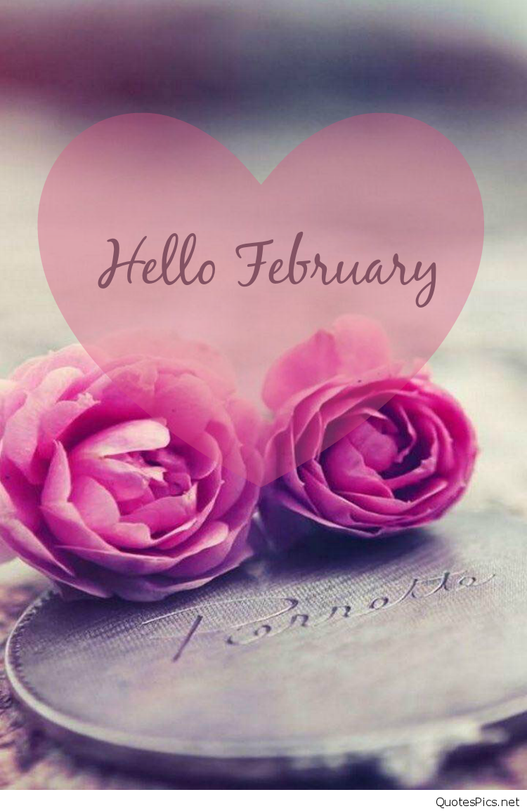 Best Hello February Quotes Sayings Pictures 2017 2018 750x1155