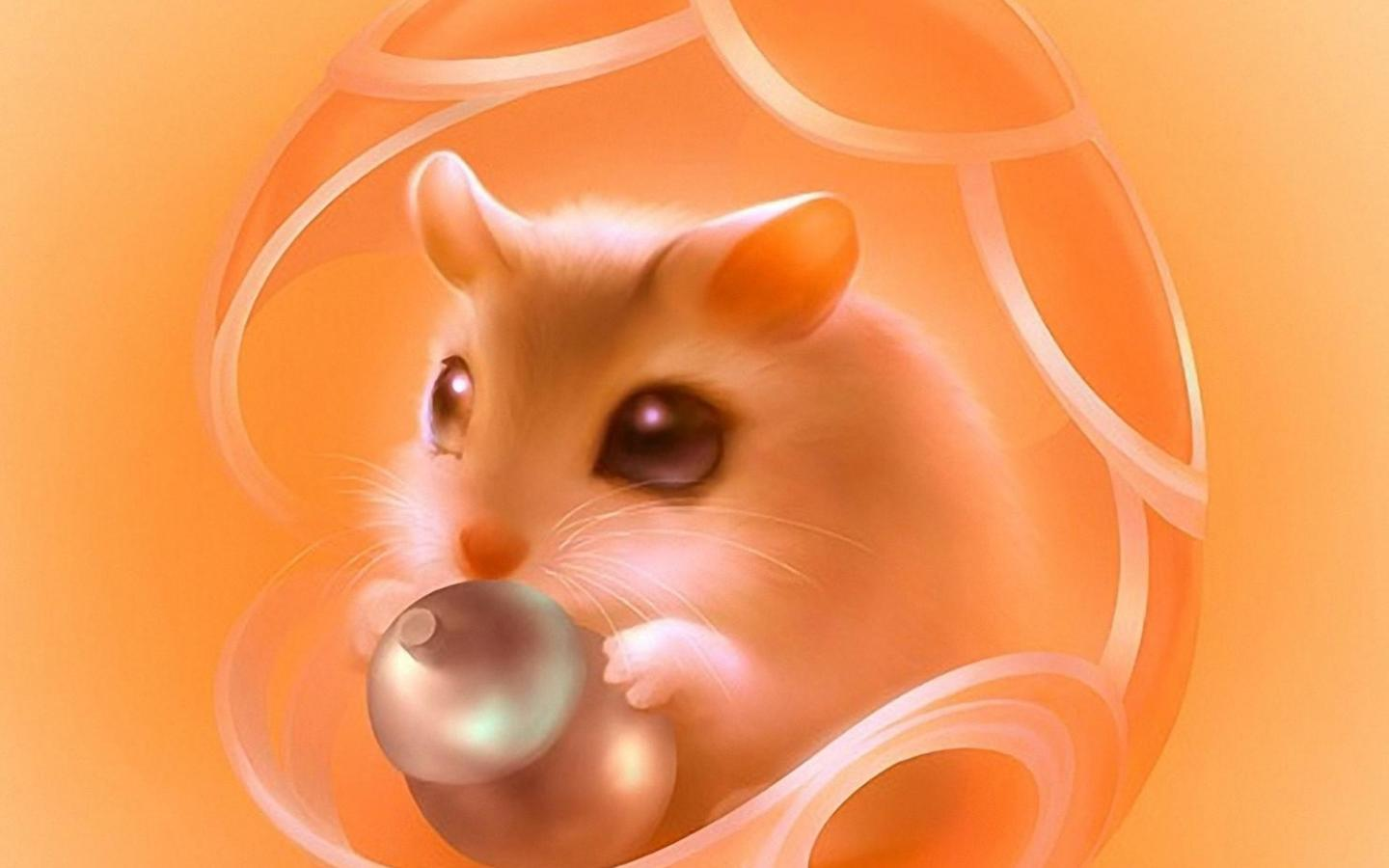 Hamster   159014   High Quality and Resolution Wallpapers on 1440x900