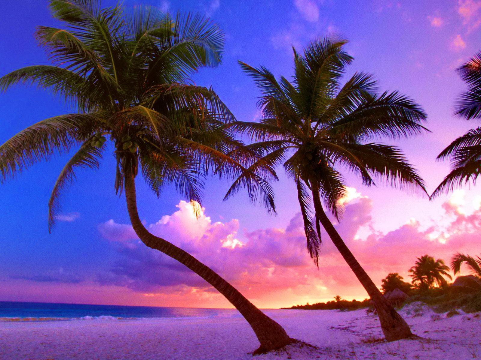 wallpaper Exotic beach near Cancun Mexico HD Widescreen 1600x1200