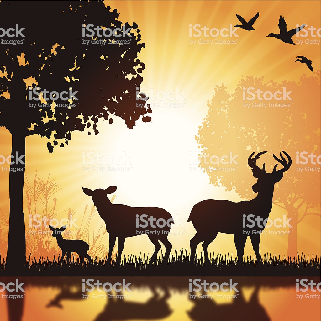 Deer Family Buck Doe Fawn Silhouette Background Stock Illustration 1024x1024
