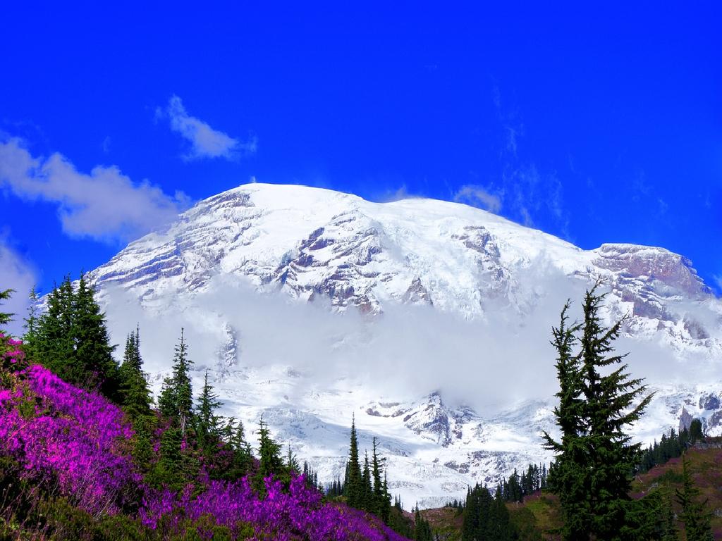Mount Rainier wallpaper   ForWallpapercom 1024x768