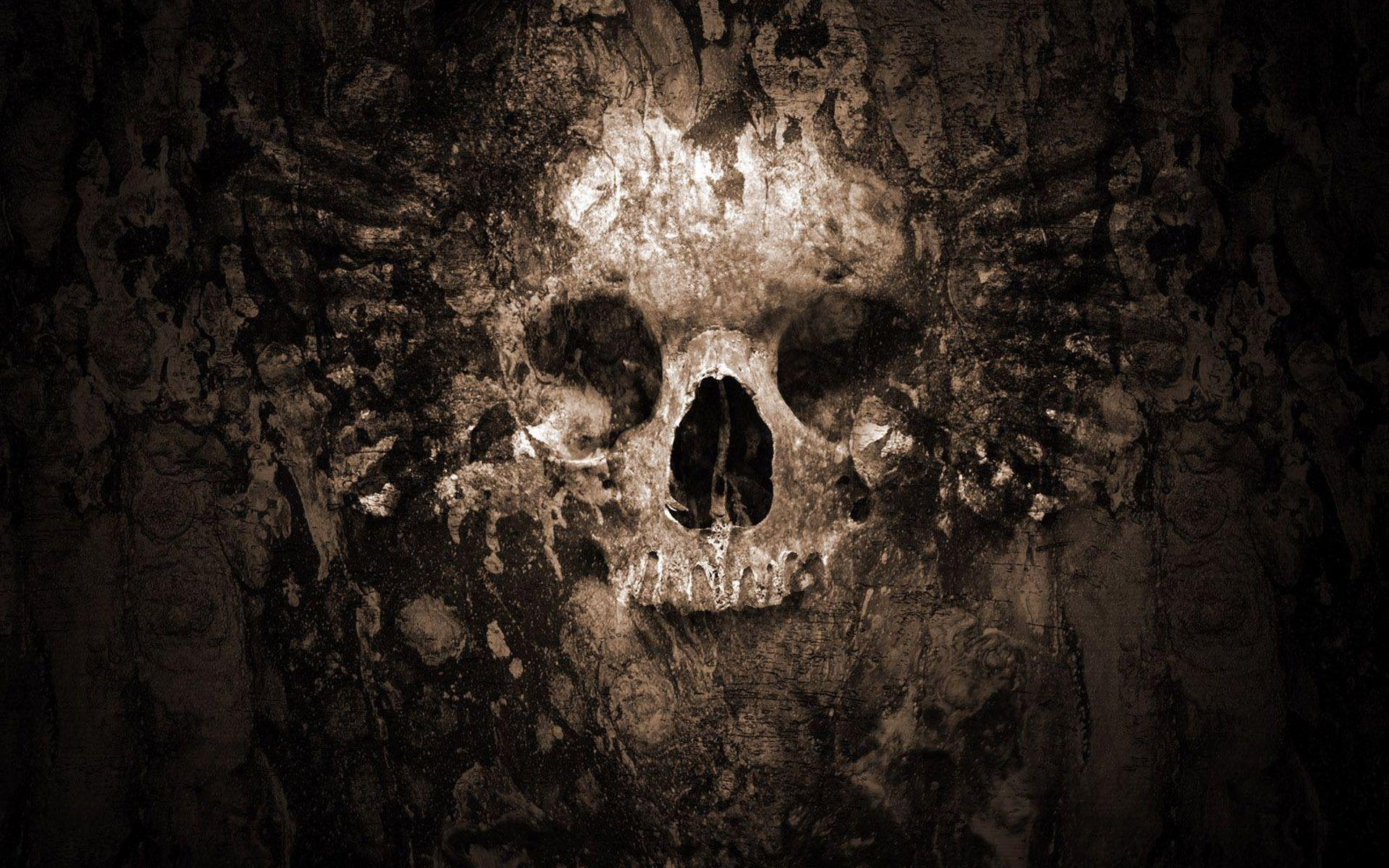 HD Skull Wallpapers 1920x1200
