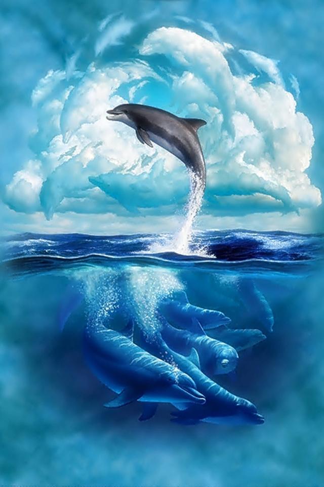 Dolphin Iphone Wallpaper Dolphin Iphone Wallpaper 640x960