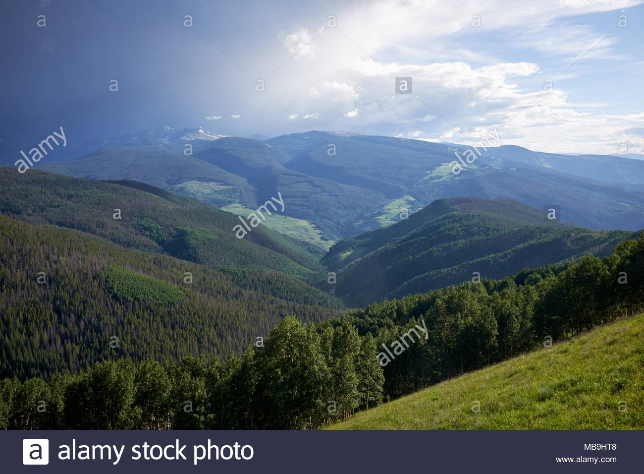 Scenic green forested valley with cloudscape in background Vail 1300x956
