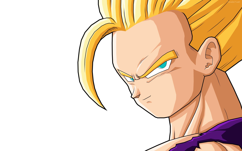 Gohan Dragon Ball Z 2880x1800