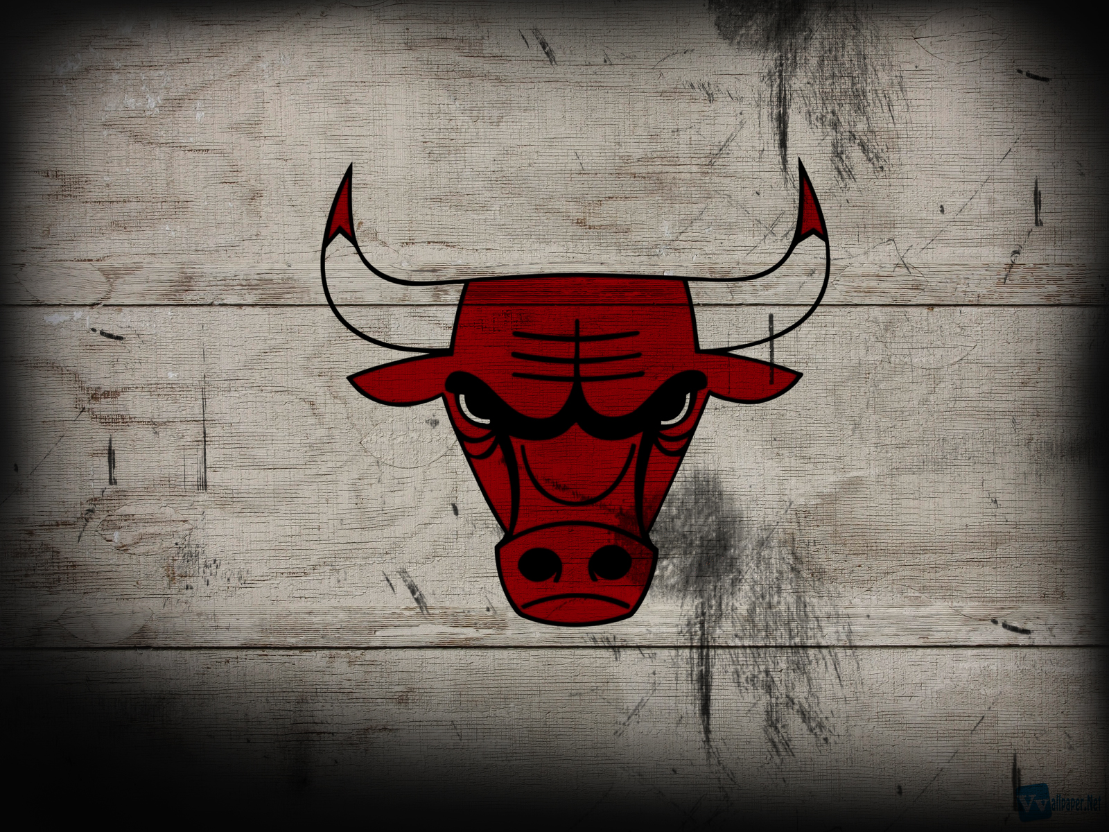 NBA Chicago Bulls Basketball Team Logo HD Wallpapers Download 1600x1200
