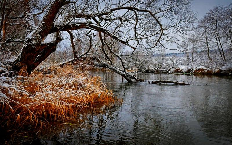 late autumn shore FIRST SNOW Nature Winter HD Desktop Wallpaper 800x500