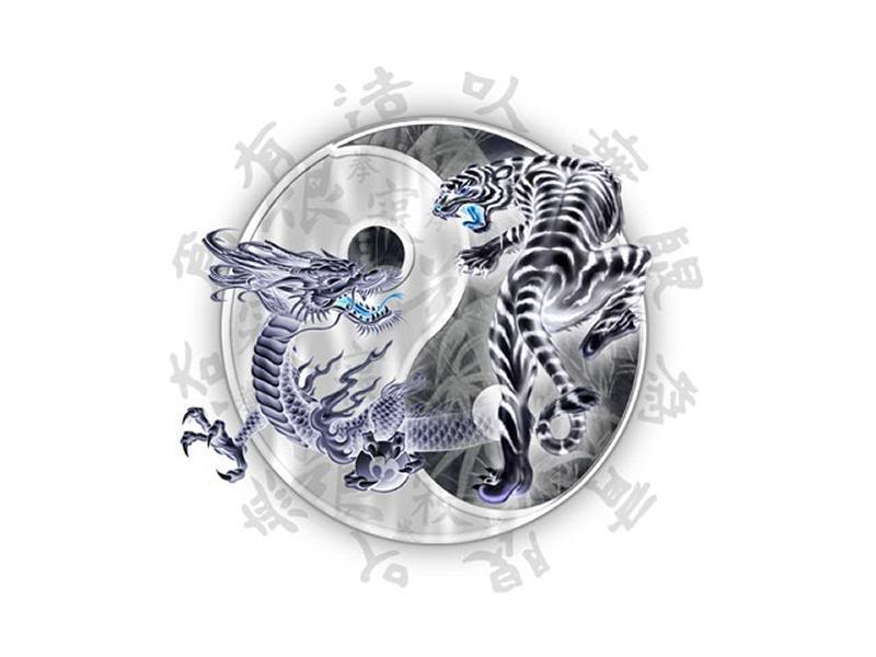Tiger Vs Dragon Graphics Code Tiger Vs Dragon Comments Pictures 800x600