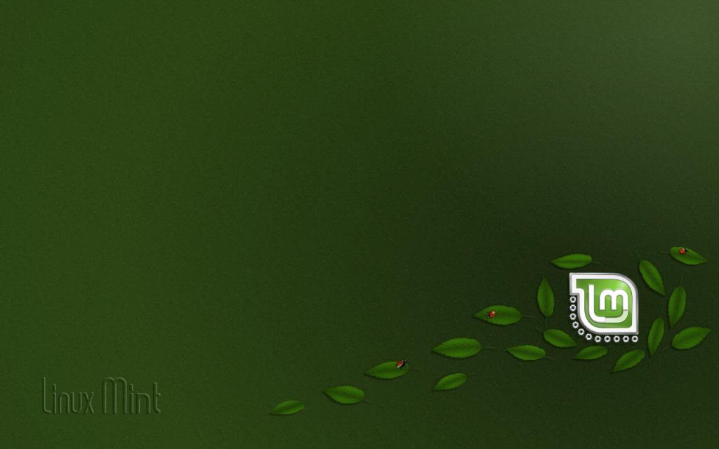 Linux Mint 1191273 HD Desktop Backgrounds Wallpaper High 1024x640