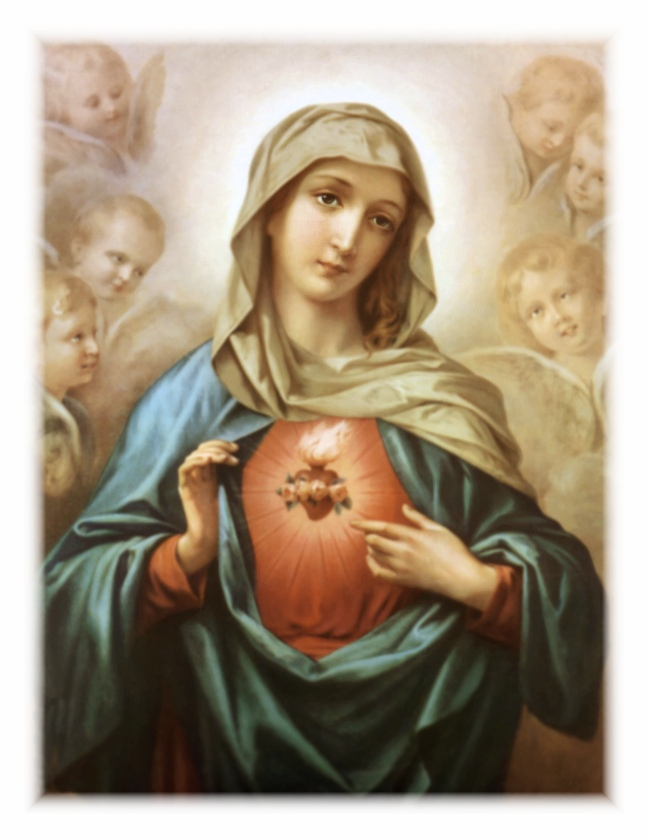Sacred Heart Of Mary Images wwwimgkidcom   The Image
