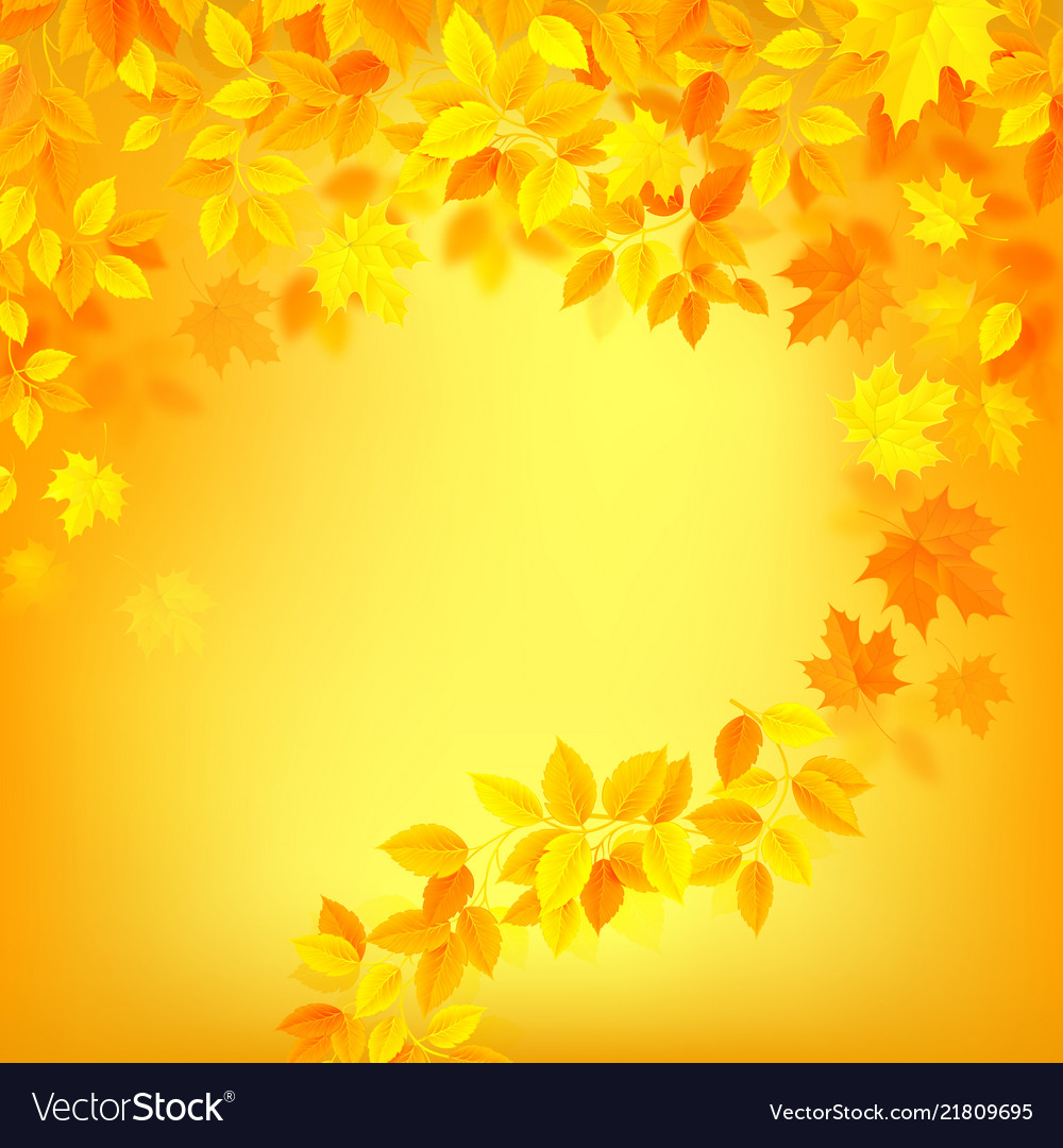 19 Yellow Colour Background On Wallpapersafari