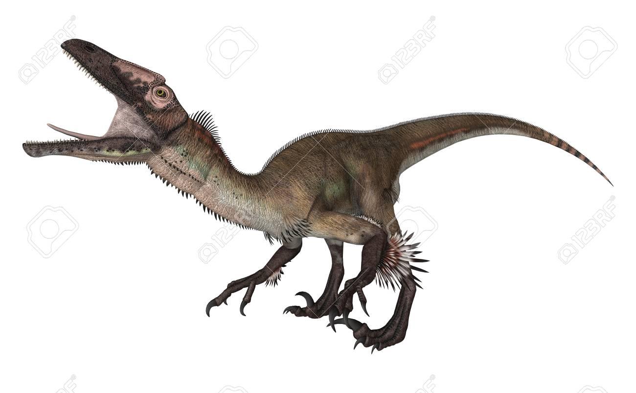 3D Digital Render Of A Dinosaur Utahraptor Isolated On White 1300x803