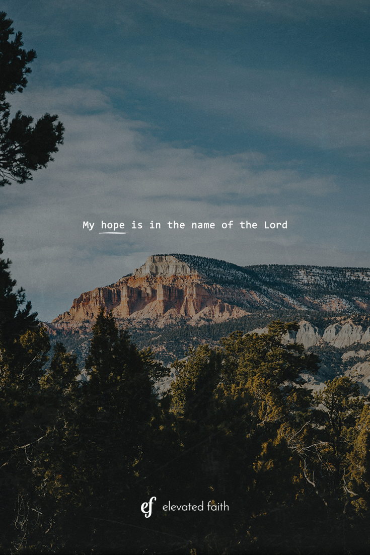 My hope is in the Lord Bible verse wallpaper Faith Background 735x1102