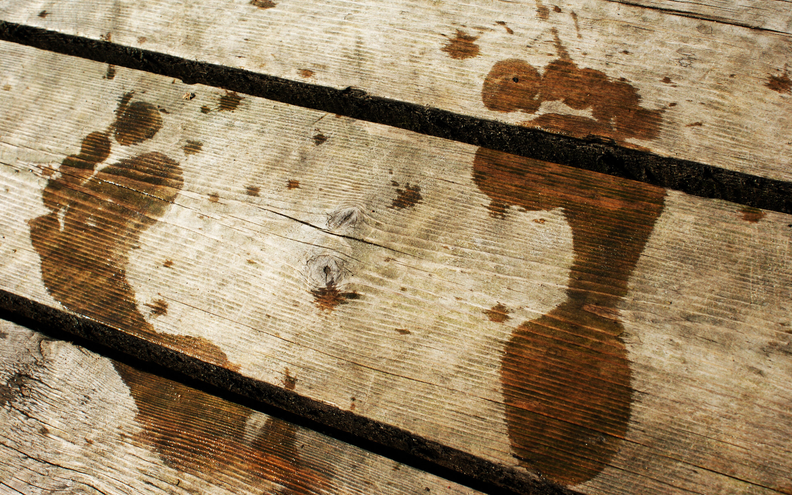 footprints on a plank wallpaper background 2560x1600