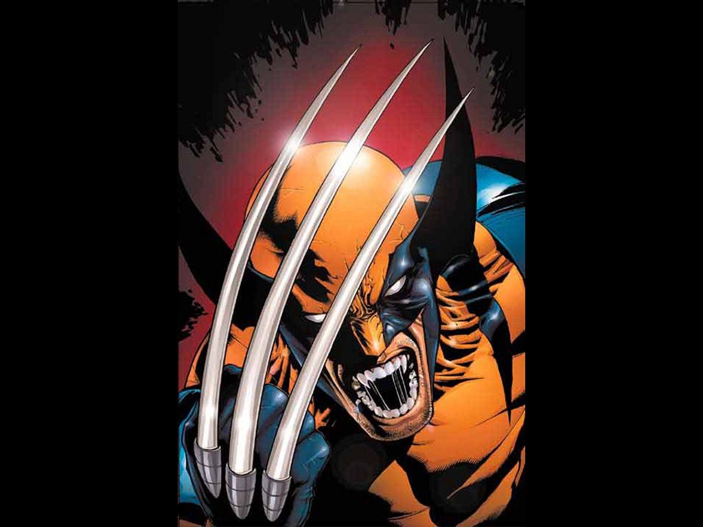 new wolverine X Men wallpaperXMen Wallpapers Wolverine wallpapers 1024x768