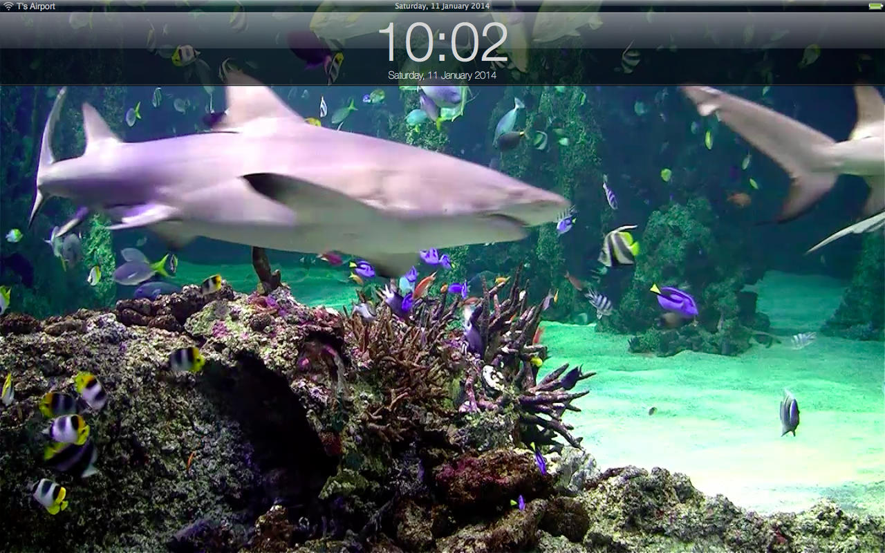 App Shopper Aquarium live lite Relaxing screensaver Clock 1280x800