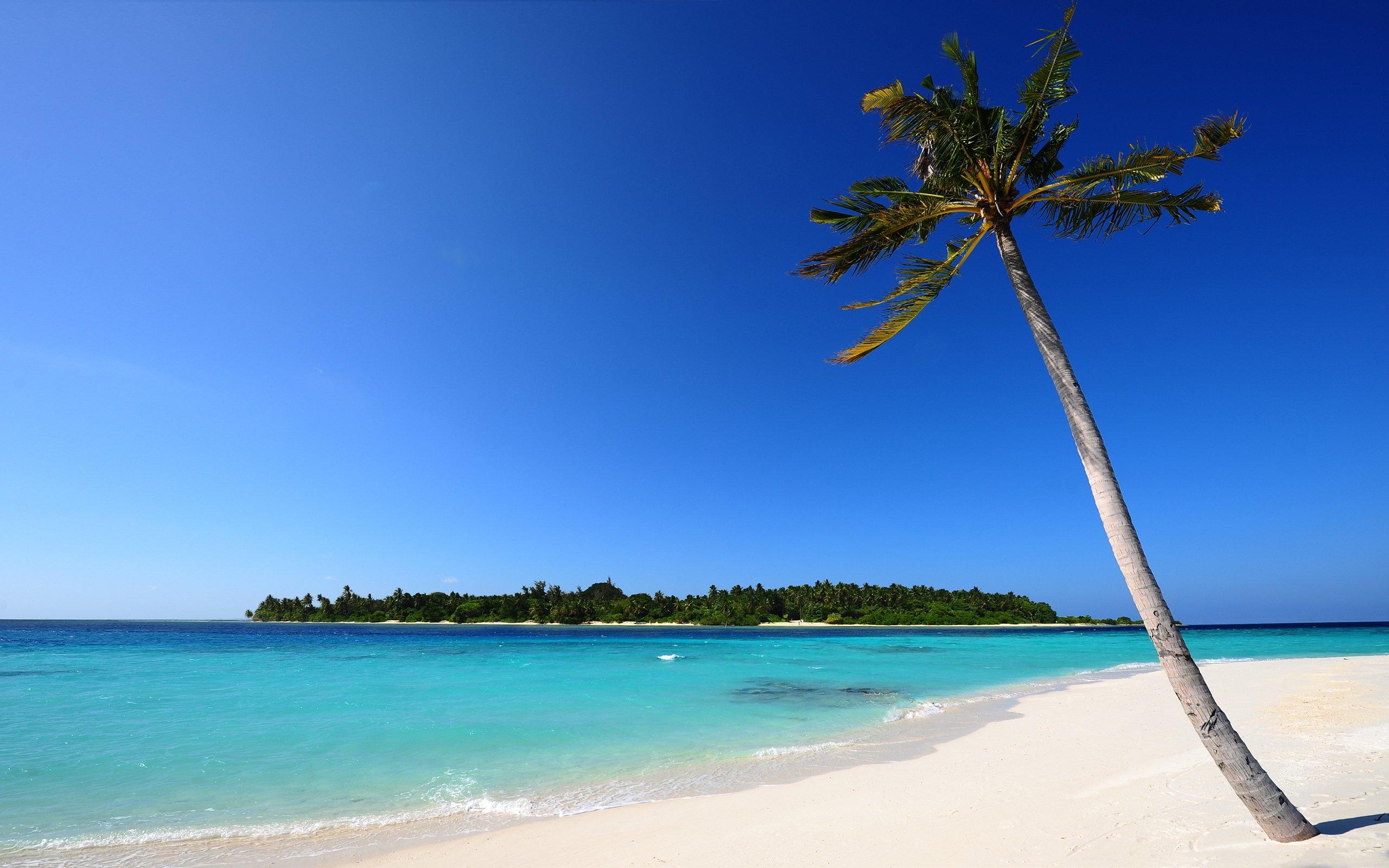 Cool Beach Sand wallpaper 1920x1080 15405 2560x1600