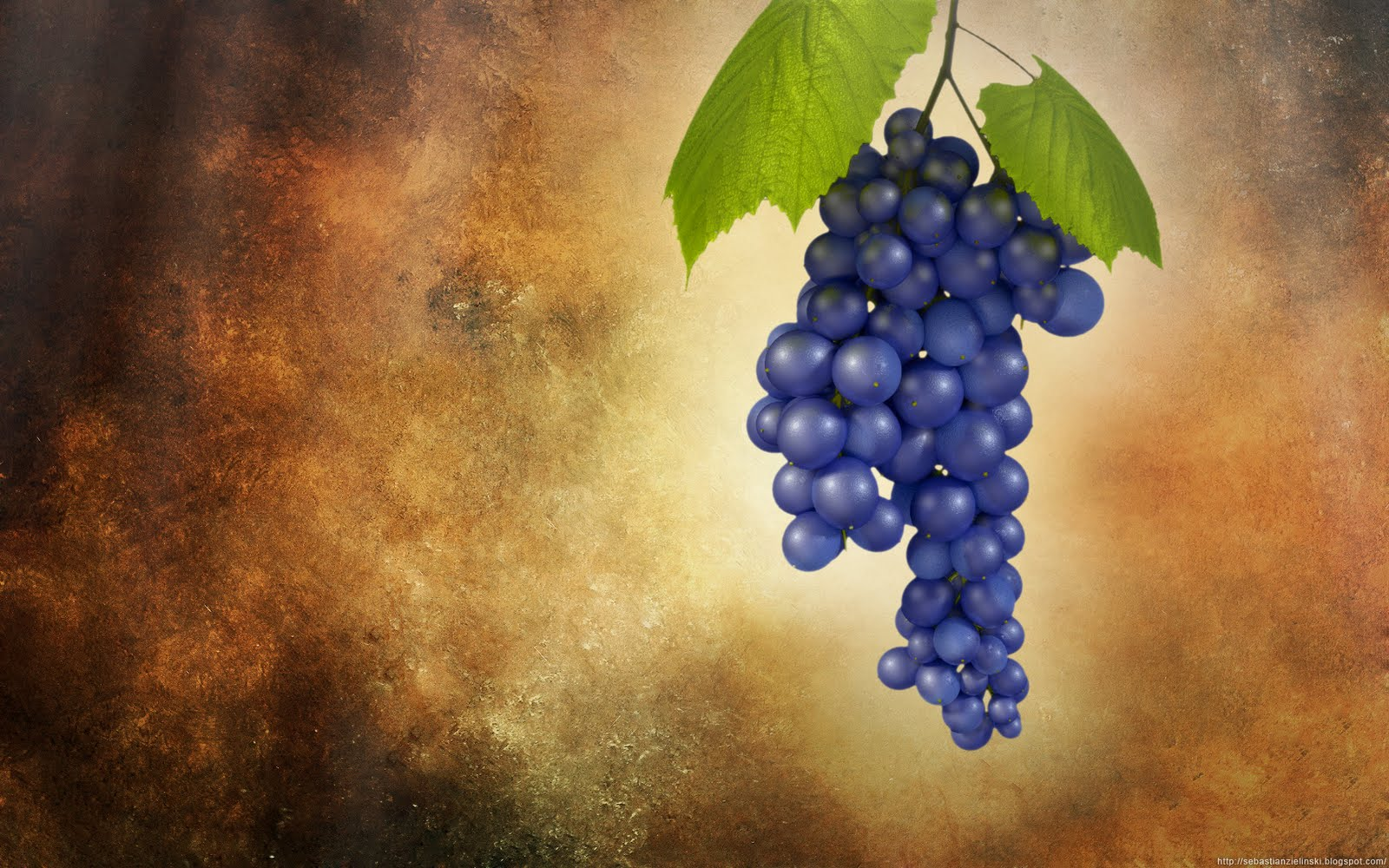 grapes wallpaperjpg 1600x1000