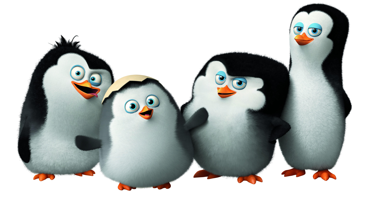 46 Penguins Of Madagascar Wallpaper On Wallpapersafari