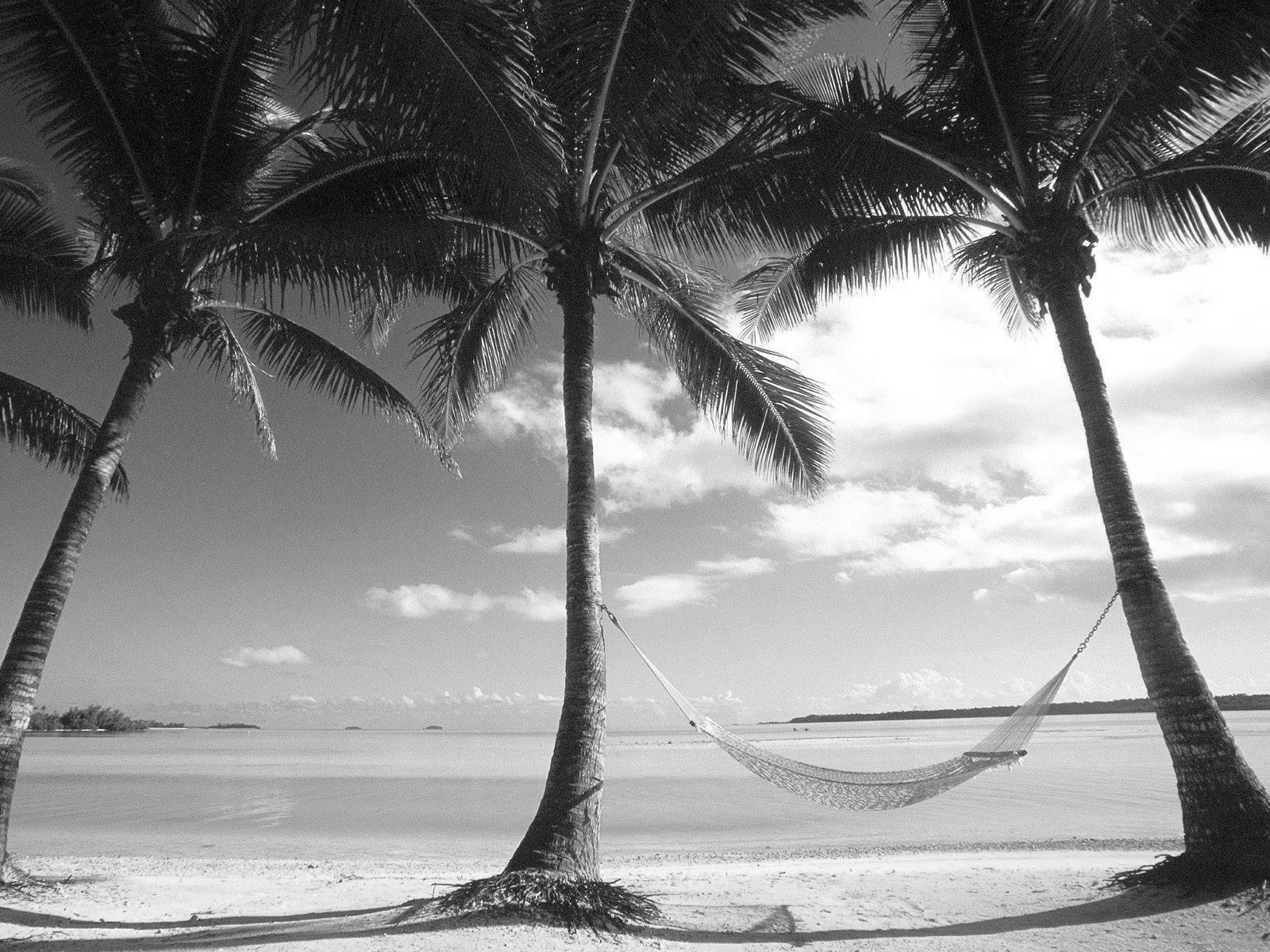 Black And White Beach Wallpaper Wallpapersafari