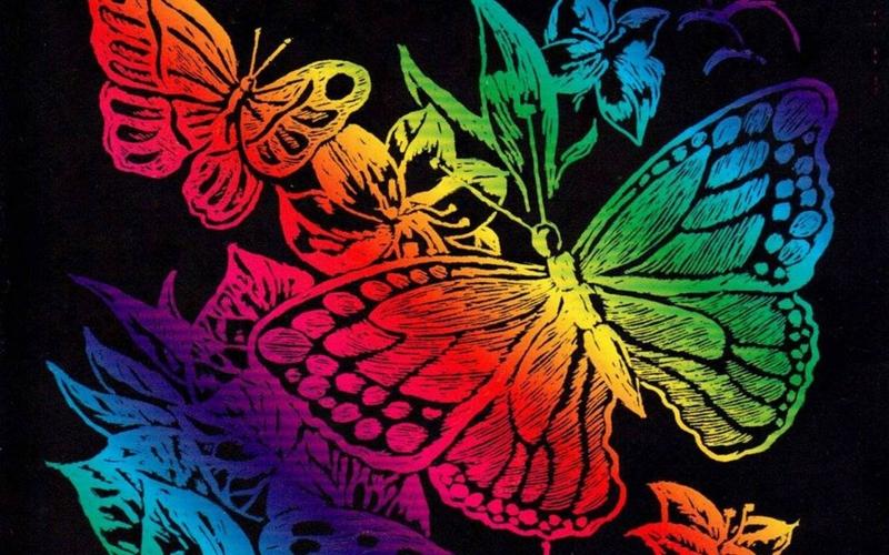 Colorful Butterflies Wallpaper Wallpapersafari