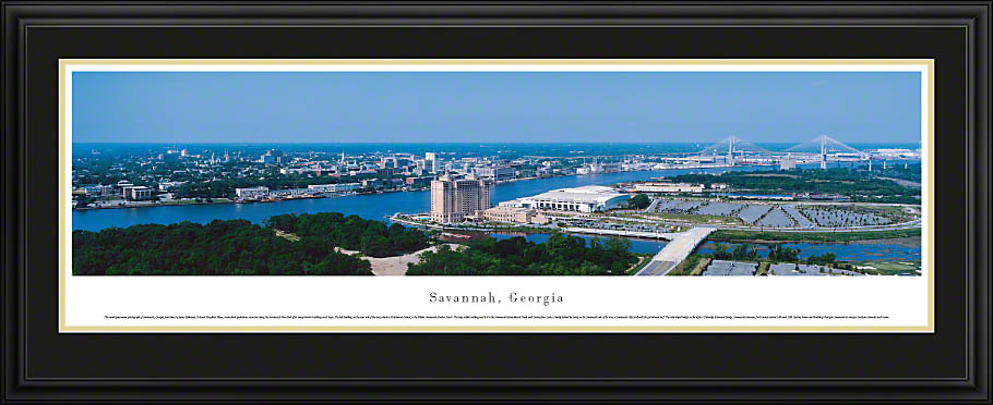 Savannah Georgia Skyline Image 910x372