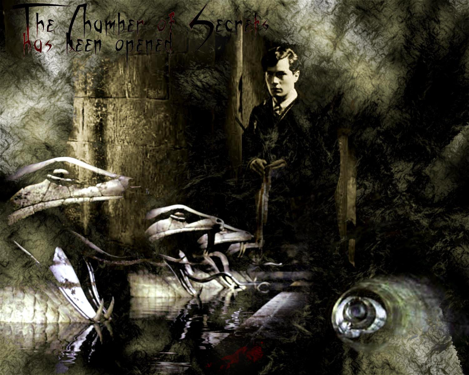 Tom Riddle  chamber of secrets by stefanieg 1500x1200