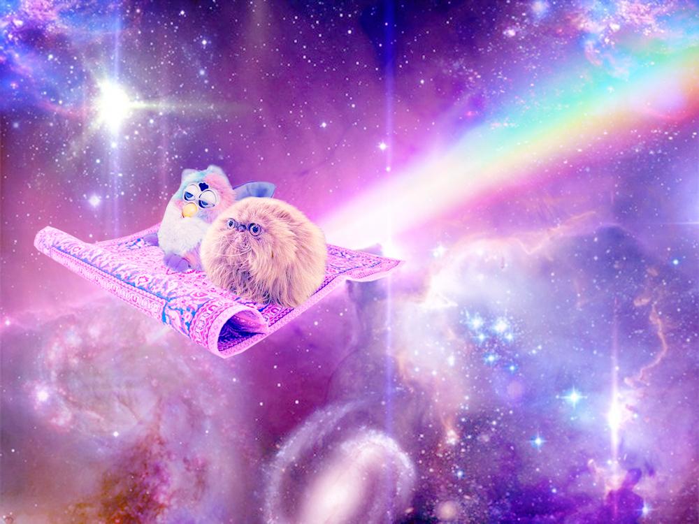 cats unicorns and galaxies wallpaper wallpapersafari