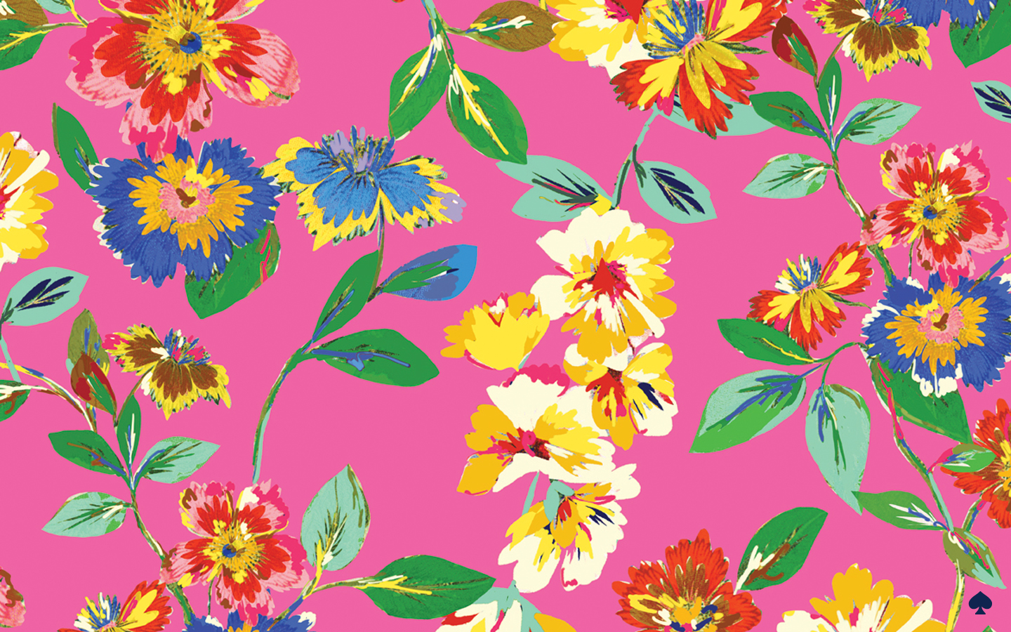 Free download Kate Spade Backgrounds