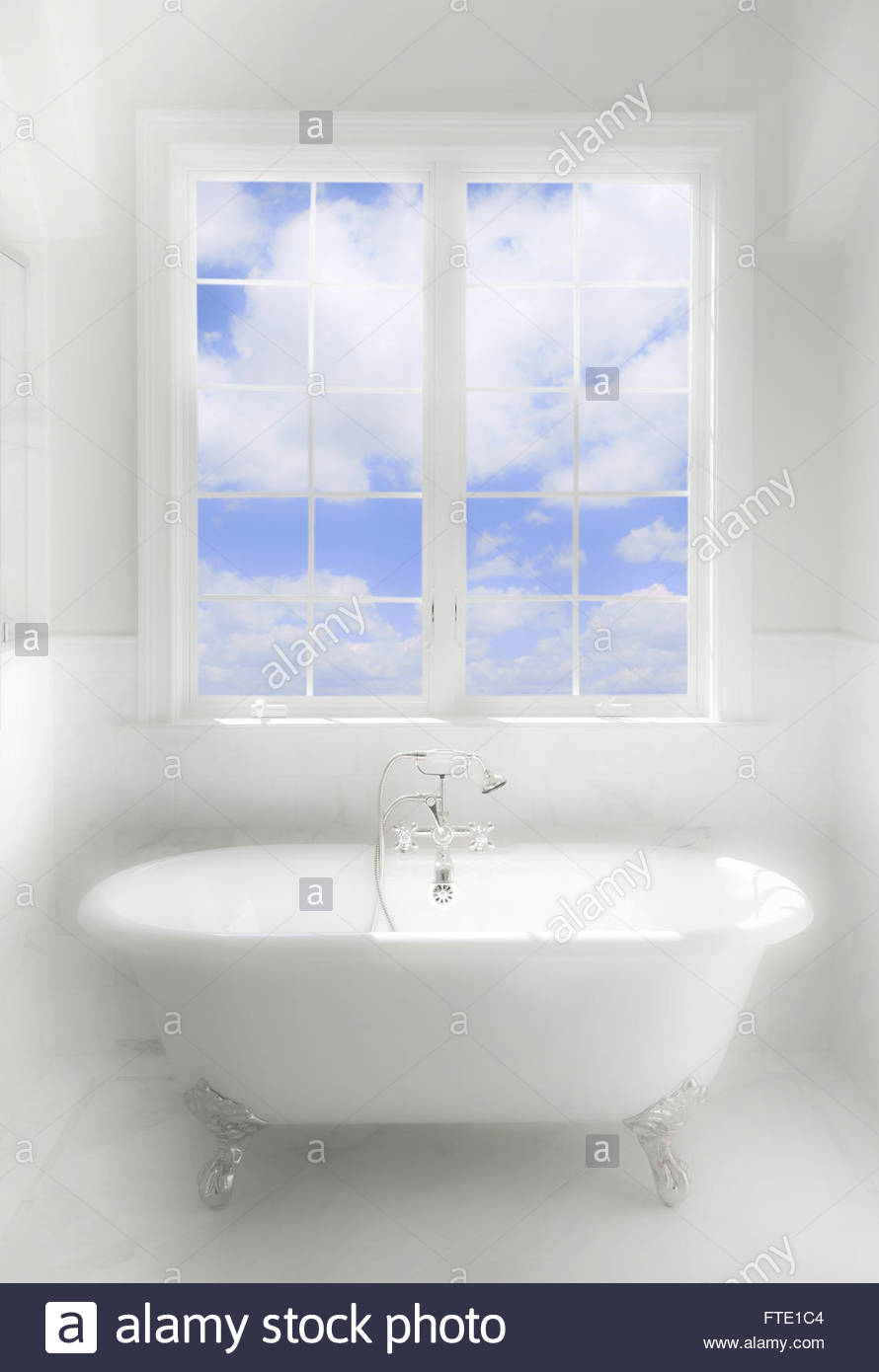 known as a bath tub ring wallpaper 890x1390