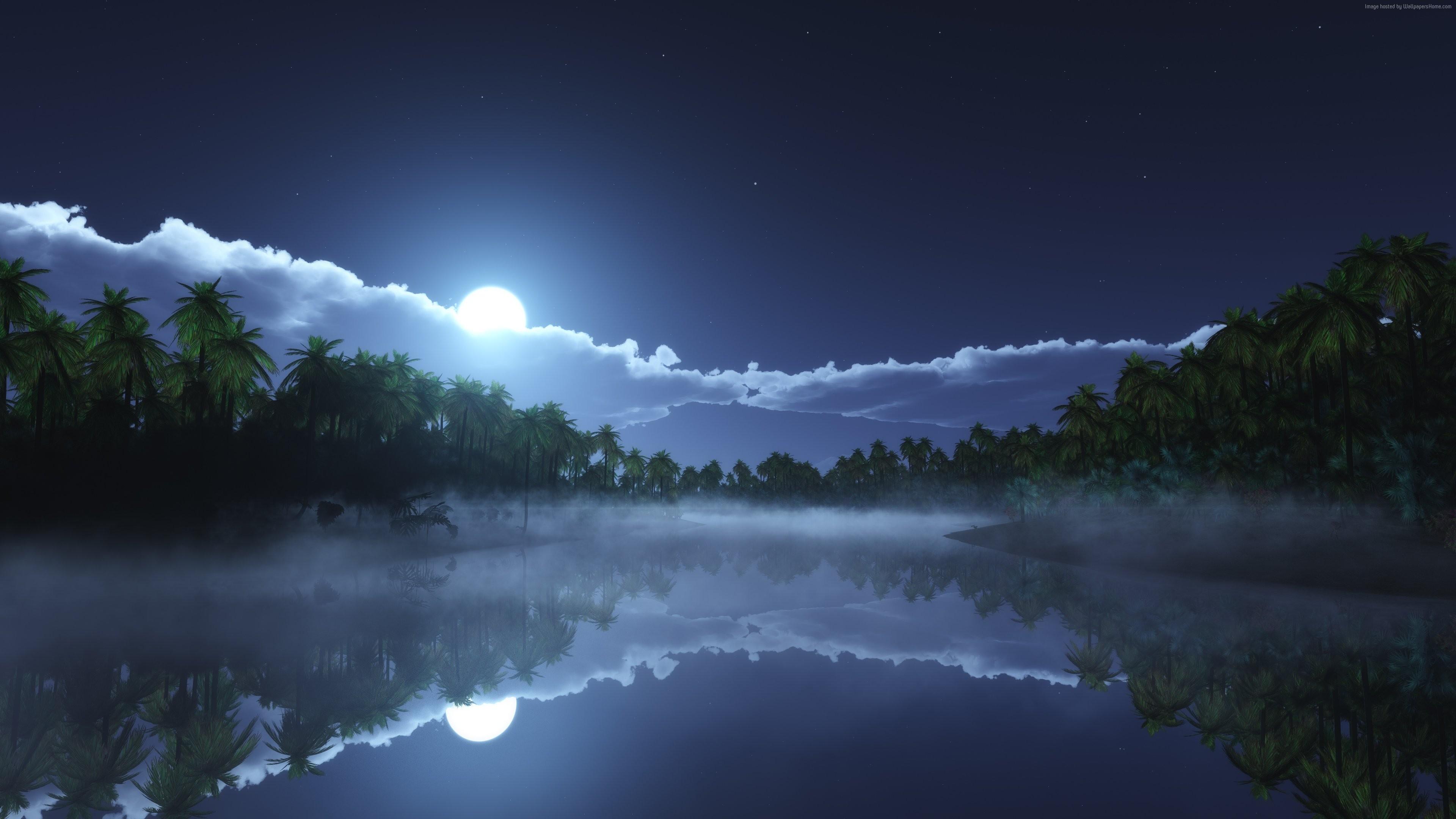 River Wallpaper Nature Water River sea palms night moon 3840x2160