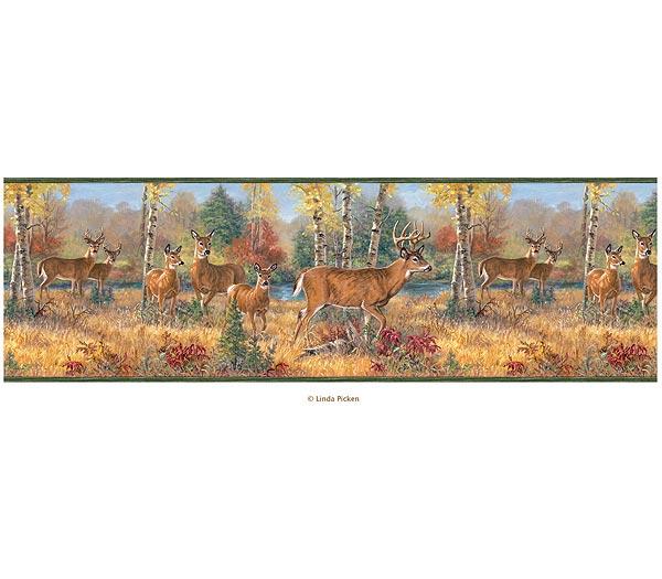 sports wallpaper borders Discount Wallpaper Borders 600x525