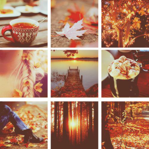 49 Fall Tumblr Wallpaper On Wallpapersafari