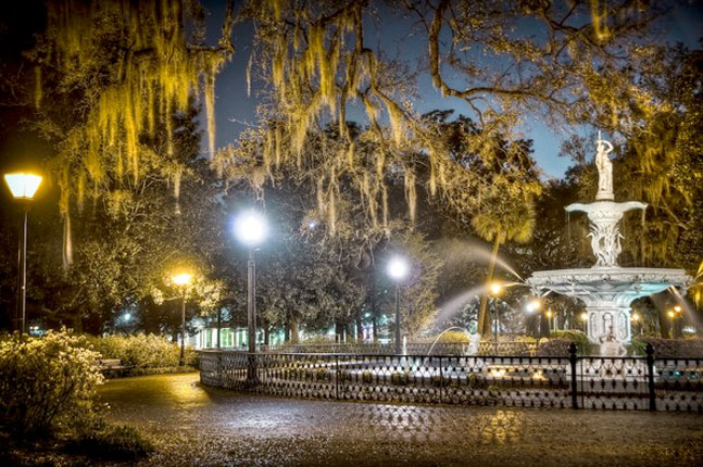 Savannah Christmas Lights