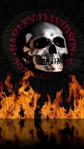 harley skull wallpaper - photo #11