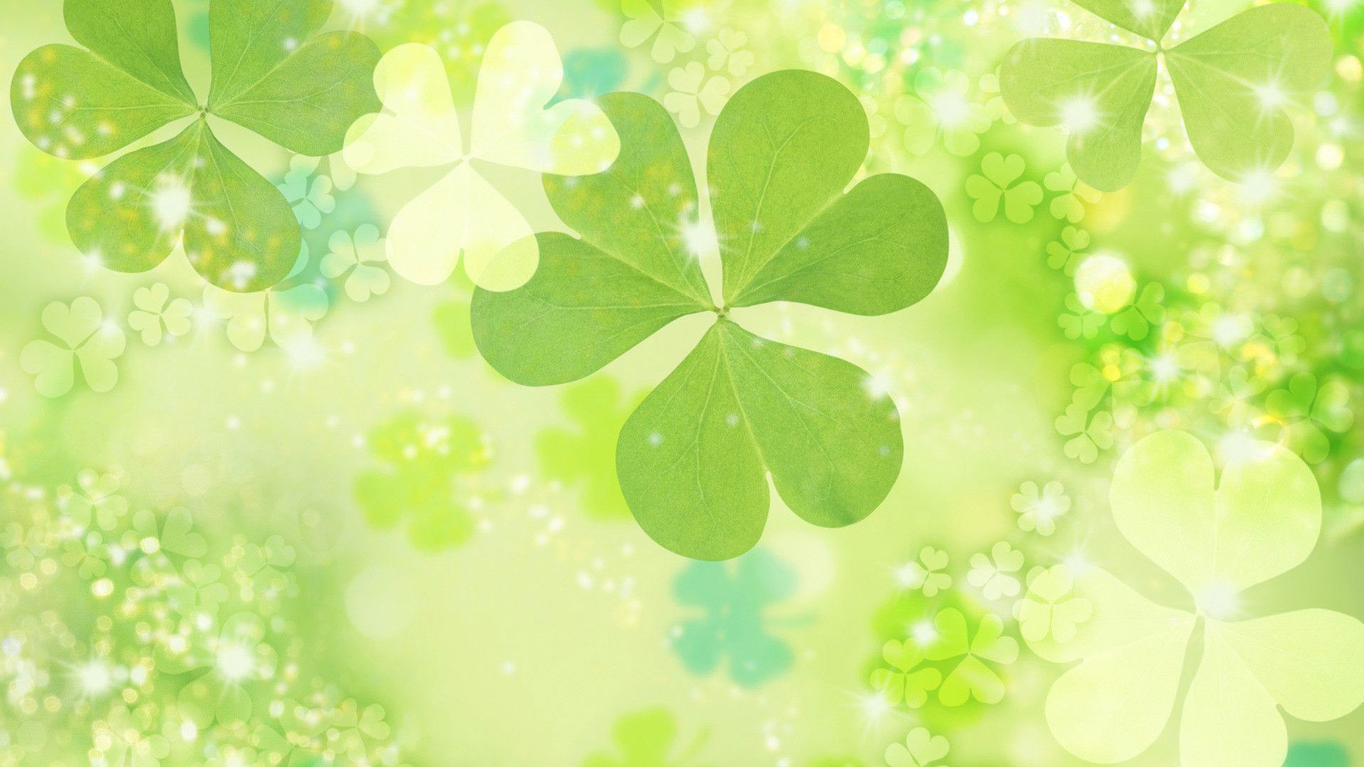 Download Four Leaf Clover Wallpapers HD 1920x1080