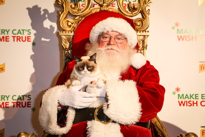grumpy cat merry christmas MEMES 1500x1000