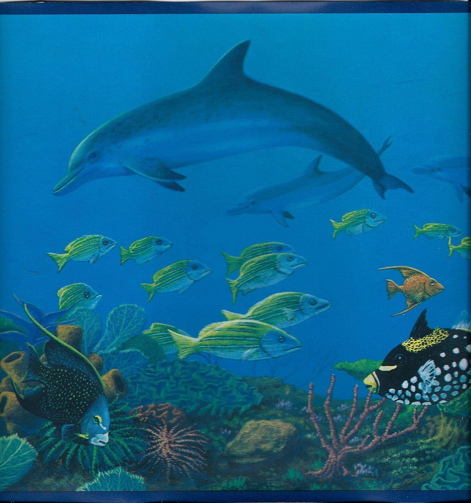 fish   Wallpaper Border Wallpaper inccom   HD Wallpapers 1498x1600
