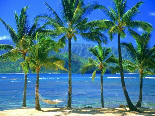 Kauai Hawaii Widescreen Wallpaper 500x375