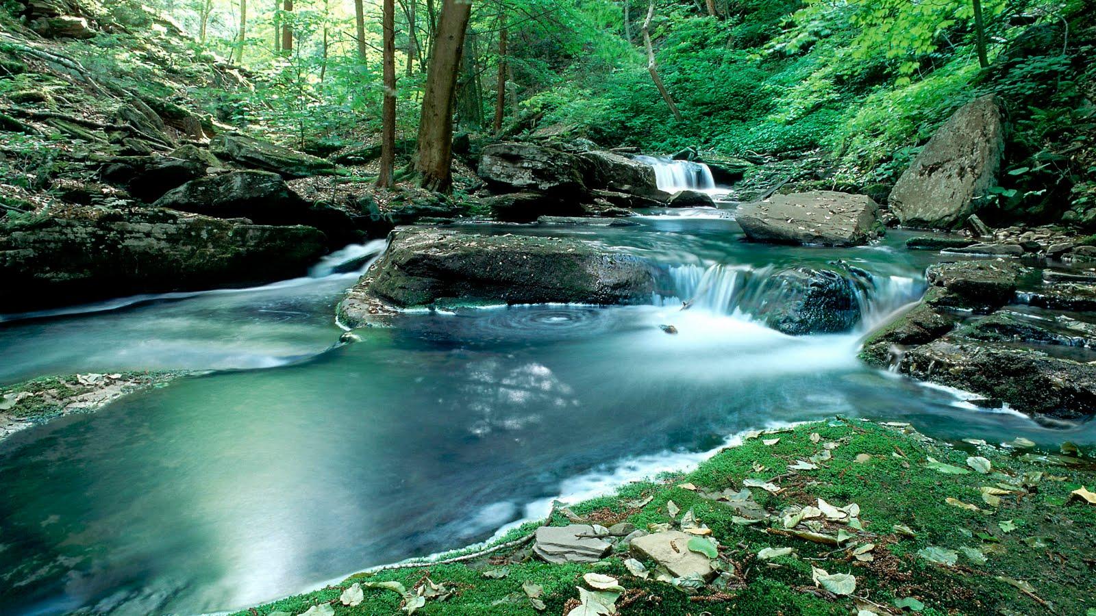 Desktop background images of nature