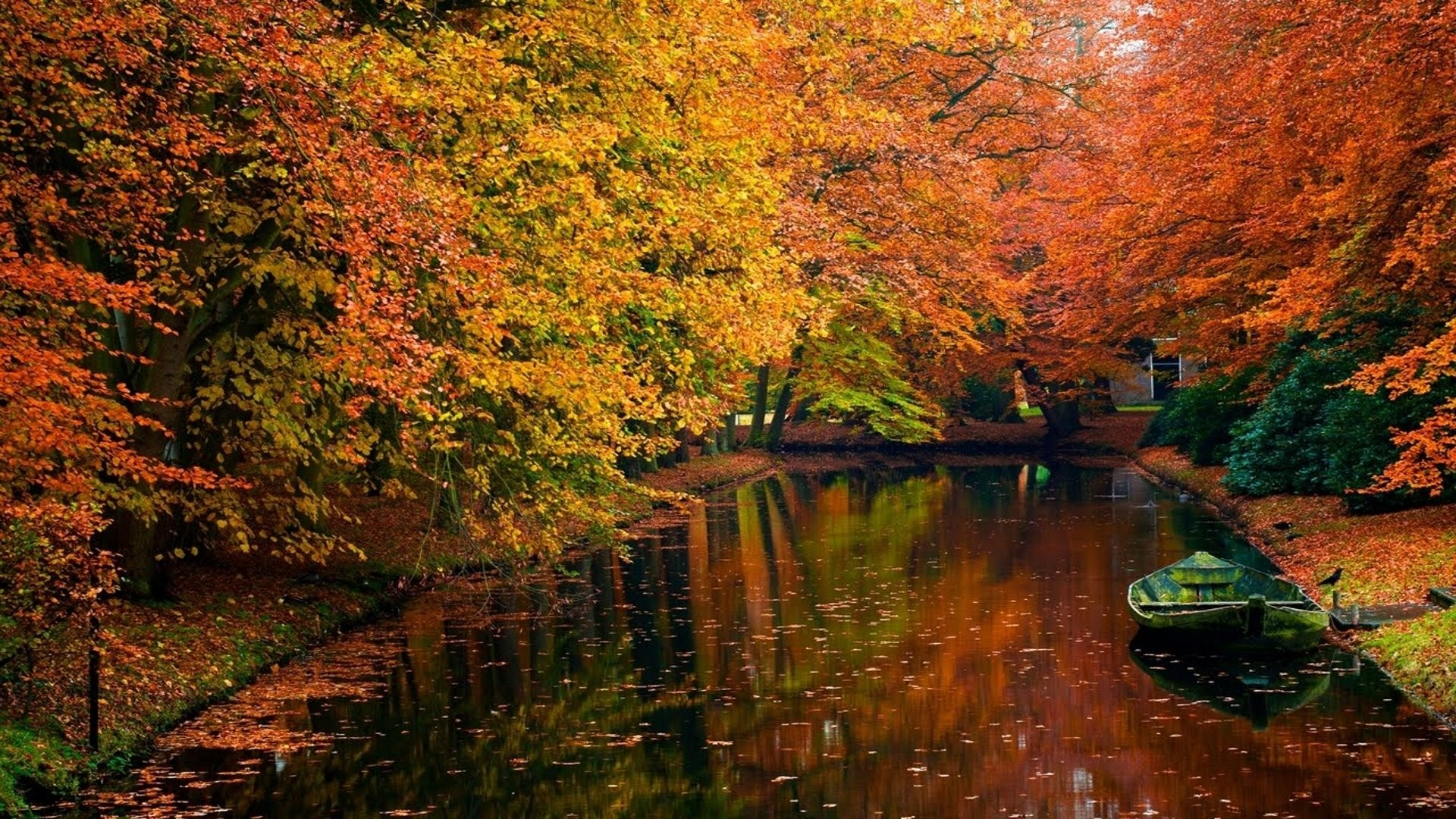River And Fall Wallpaper Desktop HQ Wallpape 3741   HD 1920x1080