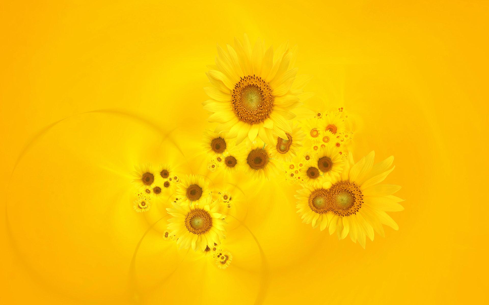 Bright Yellow Wallpaper yellow wallpaper hd - wallpapersafari