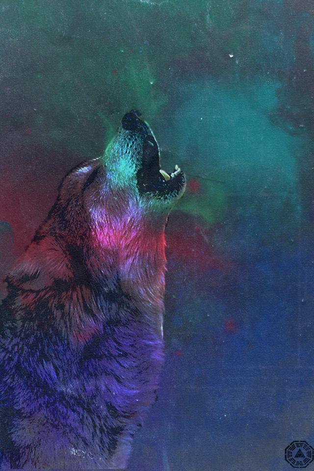 Wolf In Space Wallpaper Wide HD 640x960