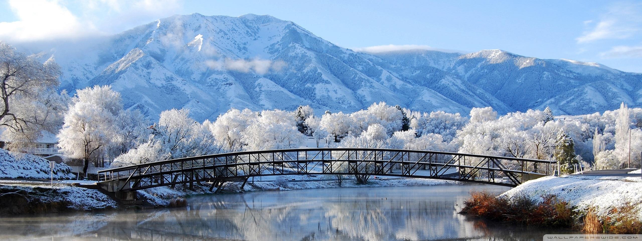 Beautiful Winter Scene 4K HD Desktop Wallpaper for 4K Ultra HD 2560x960
