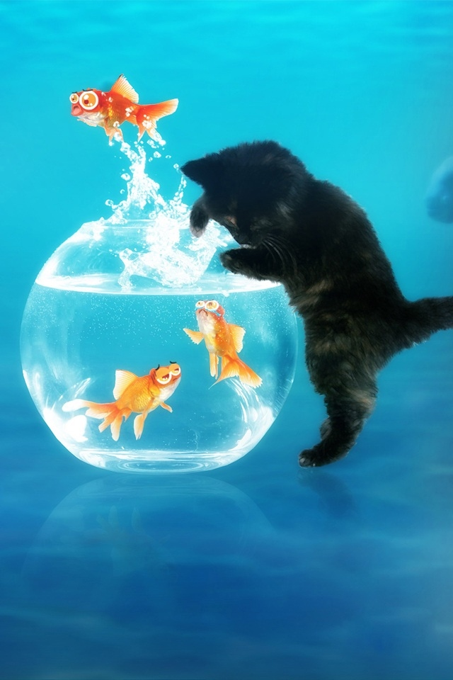 Free Download Hd Cute Cat And Fish Ipod Touch Wallpapers Backgrounds 640x960 For Your Desktop Mobile Tablet Explore 49 Cute Ipod Wallpapers Cute Girly Wallpapers For Iphone Ipod Wallpaper