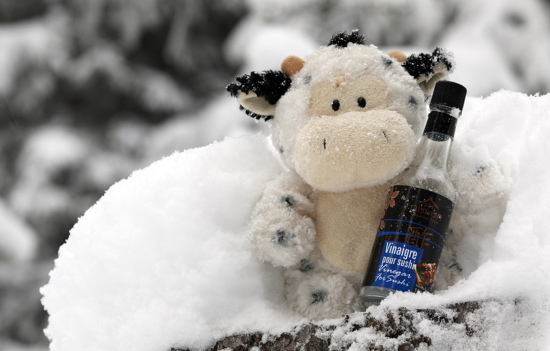 Wallpaper winter white snow wine toy bottle cow Christmas 1332x850
