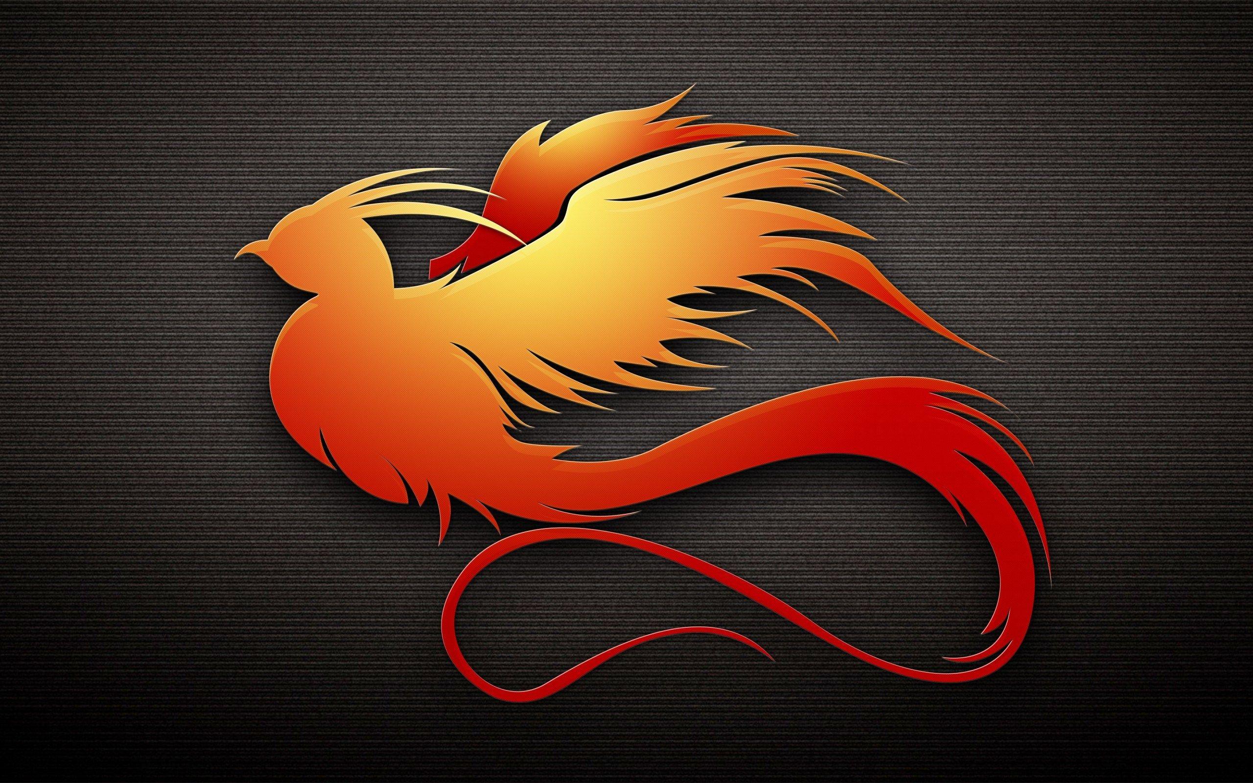 Phoenix Art Bird HD Vector Wallpaper 2560x1600   Hot HD Wallpaper 2560x1600